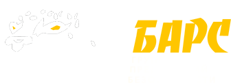 ЧОП БАРС - пультовая и физическая охрана ЯНАО